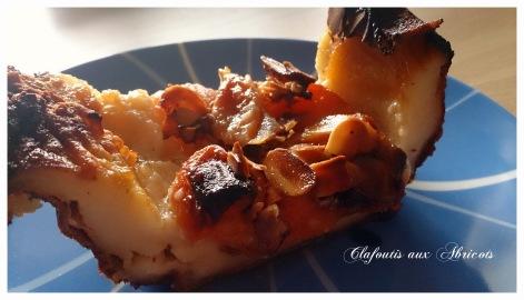 clafoutis aux abricots (4)-001
