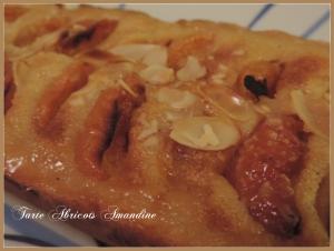 Tarte Abricot Amandine (5)