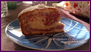 gateau marbré framboise (2)