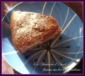 gateau marbré framboise (3)