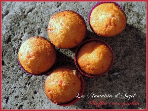 Muffins coco praline (2)