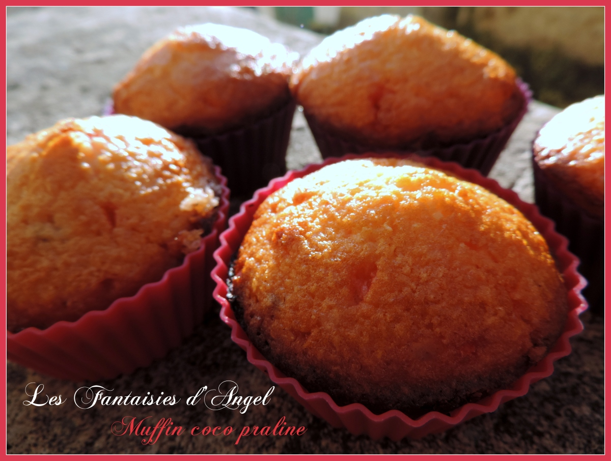# Muffin coco praline