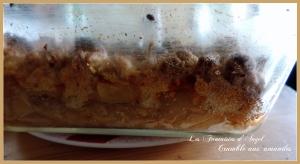 Crumble aux amandes (1)