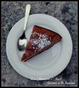 Gâteau à la banane (4)