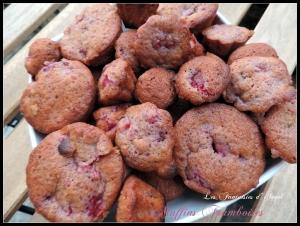 muffin framboise (2)