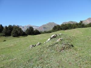 Plateau de la gentiane (13)