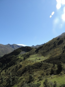 Plateau de la gentiane (17)