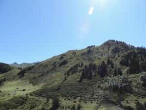 Plateau de la gentiane (20)