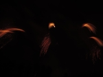 Cloture Pyrotechnie spet15 (12)