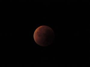 Eclipse de lune - 28 sept 15 (29)