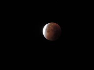 Eclipse de lune - 28 sept 15 (65)
