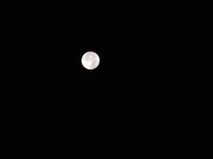 Eclipse de lune - 28 sept 15 (97)