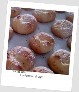 Biscuit lapin (5)
